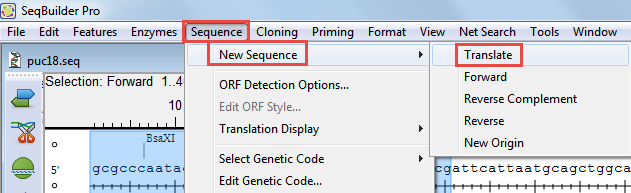 Translate a nucleotide sequence - Transitioning to